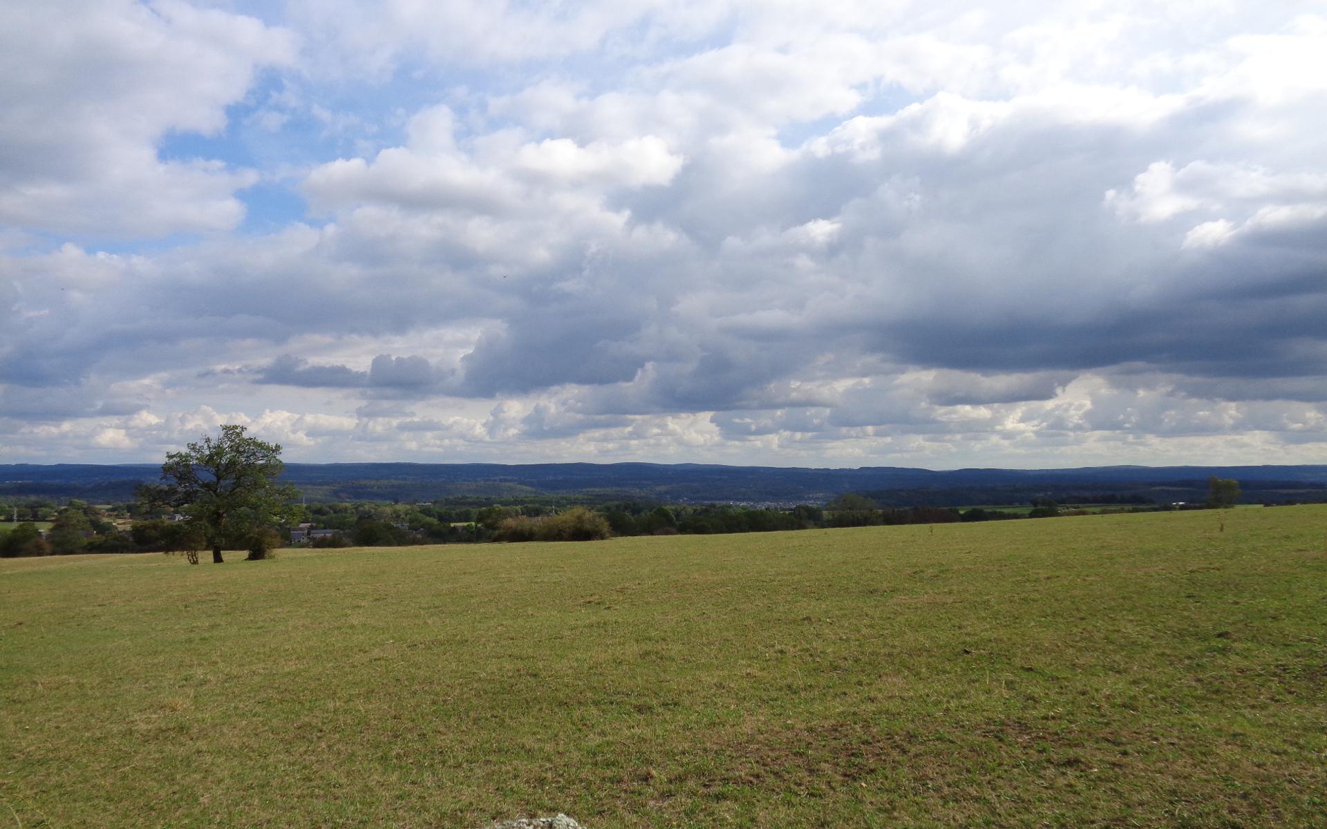 Bois de Viné parcours VTT au départ de Durbuy, paysage vers la vallée de l'Ourthe