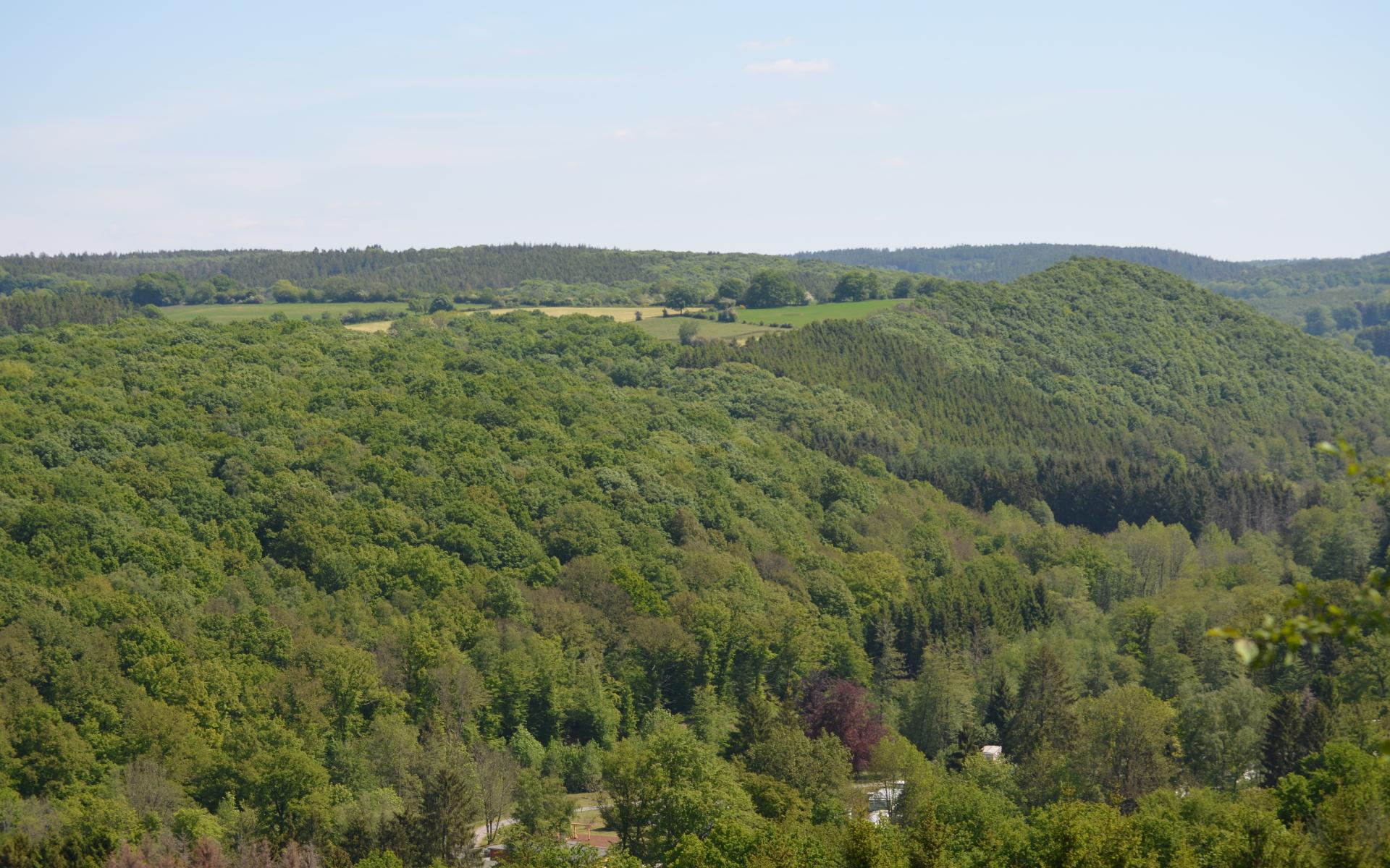 panorama depuis la promenade moulin des roches au départ de Villers Sainte Gertrude