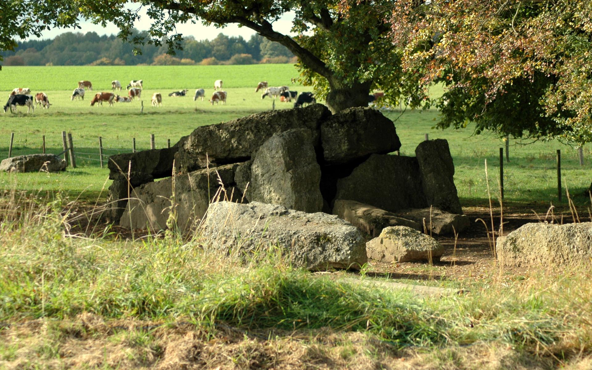 Le dolmen de Wéris