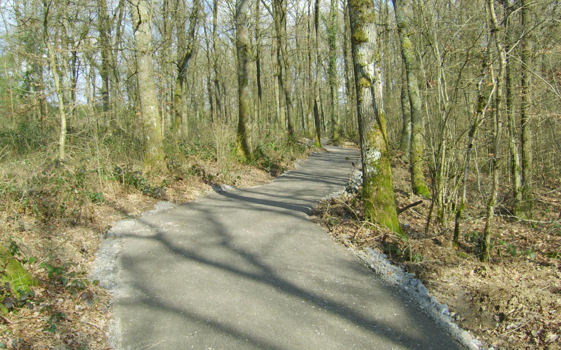 un chemin très utile entre Barvaux et Wéris